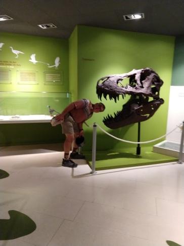 Elche Paleotological 2
